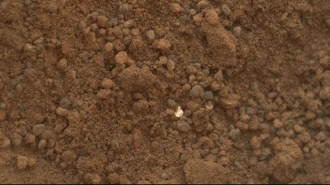 see the image 'Mars Soil Sample Delivered'