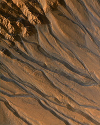 False-color image of gully channels in a crater in the southern highlands of Mars.