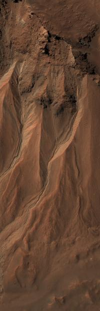 This image from the High Resolution Imaging Science Experiment (HiRISE) camera on NASA's Mars Reconnaissance Orbiter shows gullies near the edge of Hale crater on southern Mars. The view covers an area about 1 kilometer (0.6 mile) across and was taken on Aug. 3, 2009.