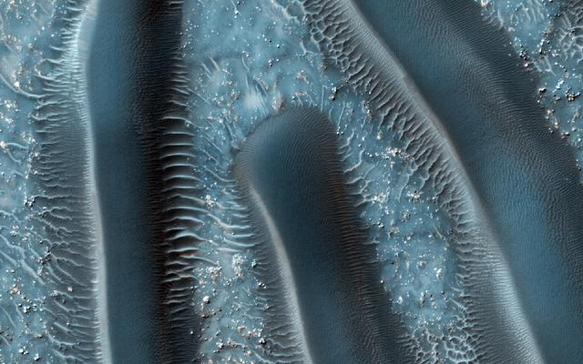 Millipedes of Mars