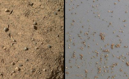 see the image 'Windblown Sand from the 'Rocknest' Drift (Unannotated)'