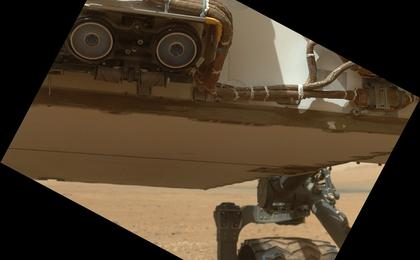 see the image 'Belly Check for Curiosity'