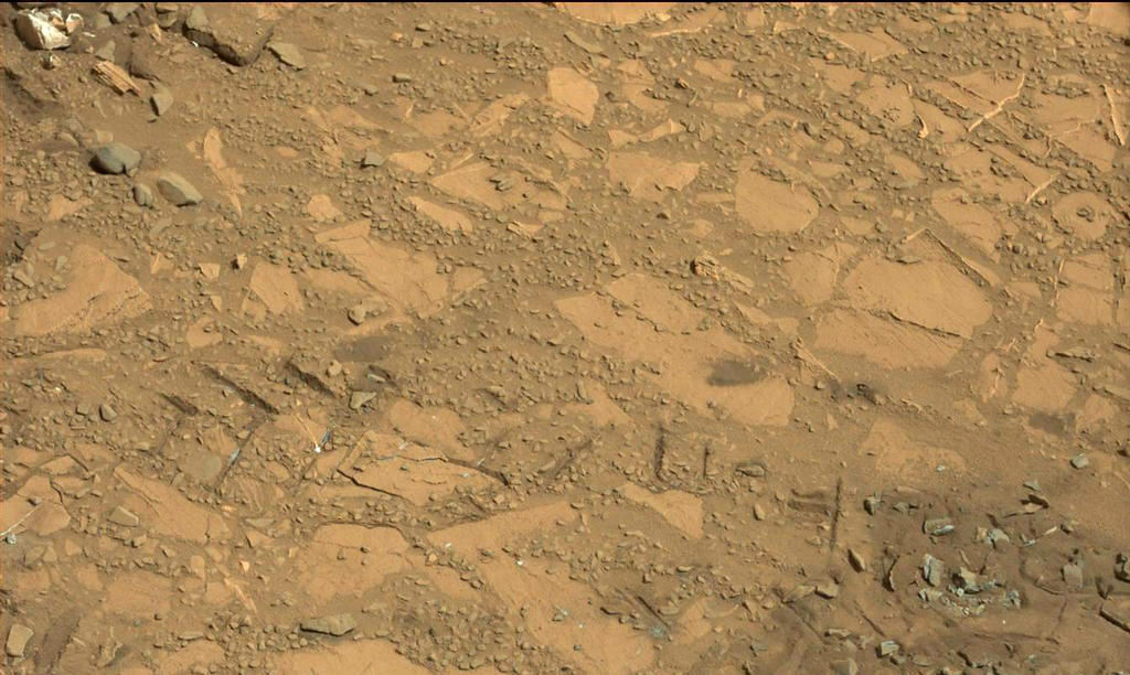 "This image from the Mast Camera (Mastcam) on NASA's Curiosity Mars rover shows a portion of the pale rock outcrop that includes the ""Bonanza King"" target chosen for evaluation as the mission's fourth rock-drilling site."