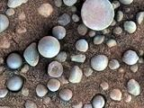 The small spherules on the Martian surface in this close-up image are near Fram Crater, visited by NASA's Mars Exploration Rover Opportunity during April 2004.