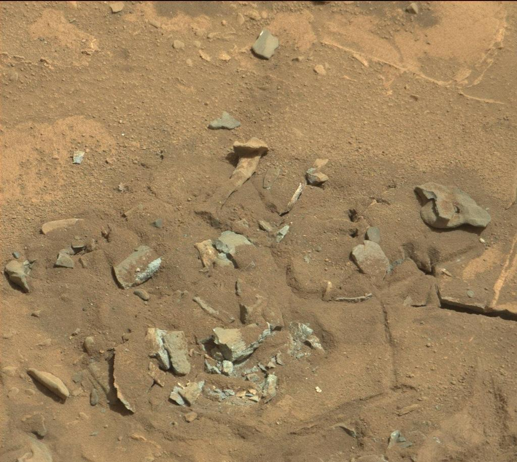 This Mars rock may look like a femur thigh bone, but its shape is likely sculpted by erosion, either wind or water.