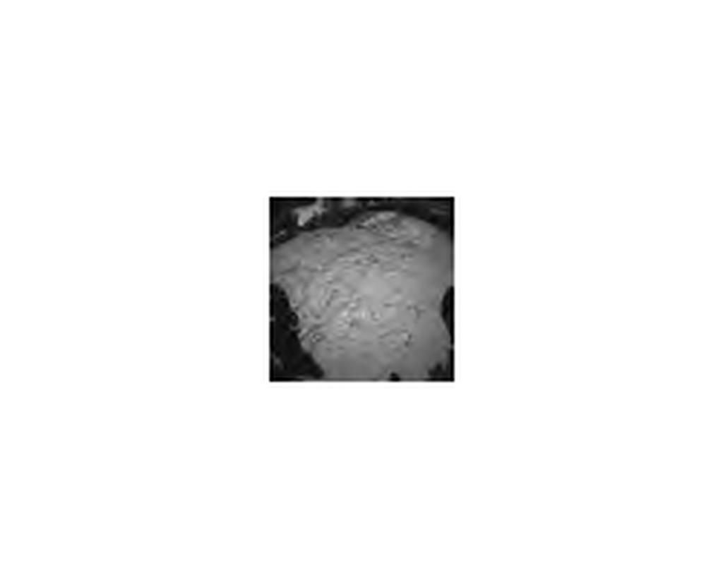 "This ""thumbnail"" image illustrates the size of the first image expected from NASA's Curiosity rover."