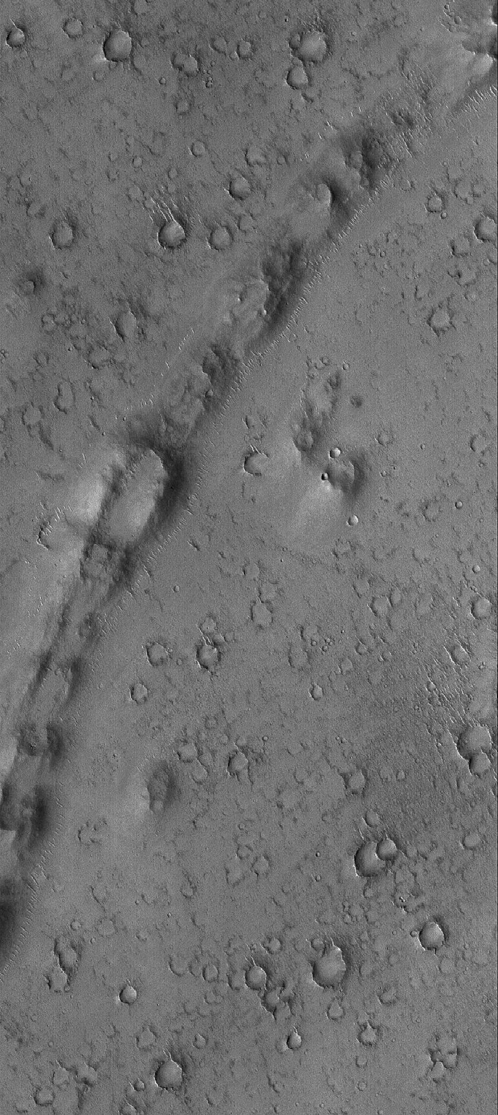 This Mars Global Surveyor (MGS) Mars Orbiter Camera (MOC) image shows a curved, pitted ridge in Isidis Planitia. This feature may be a remnant of a once more-extensive layer of material that covered the present, cratered surface.