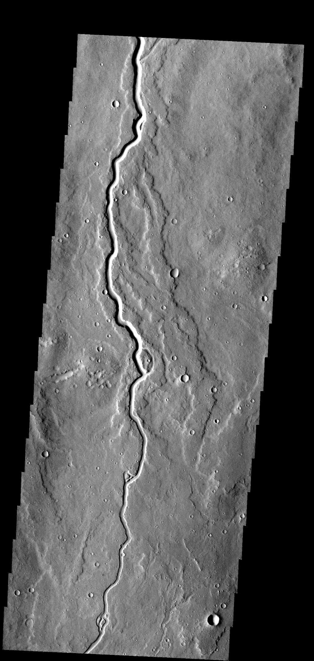 This lava channel is part of the Elysium Mons flows.