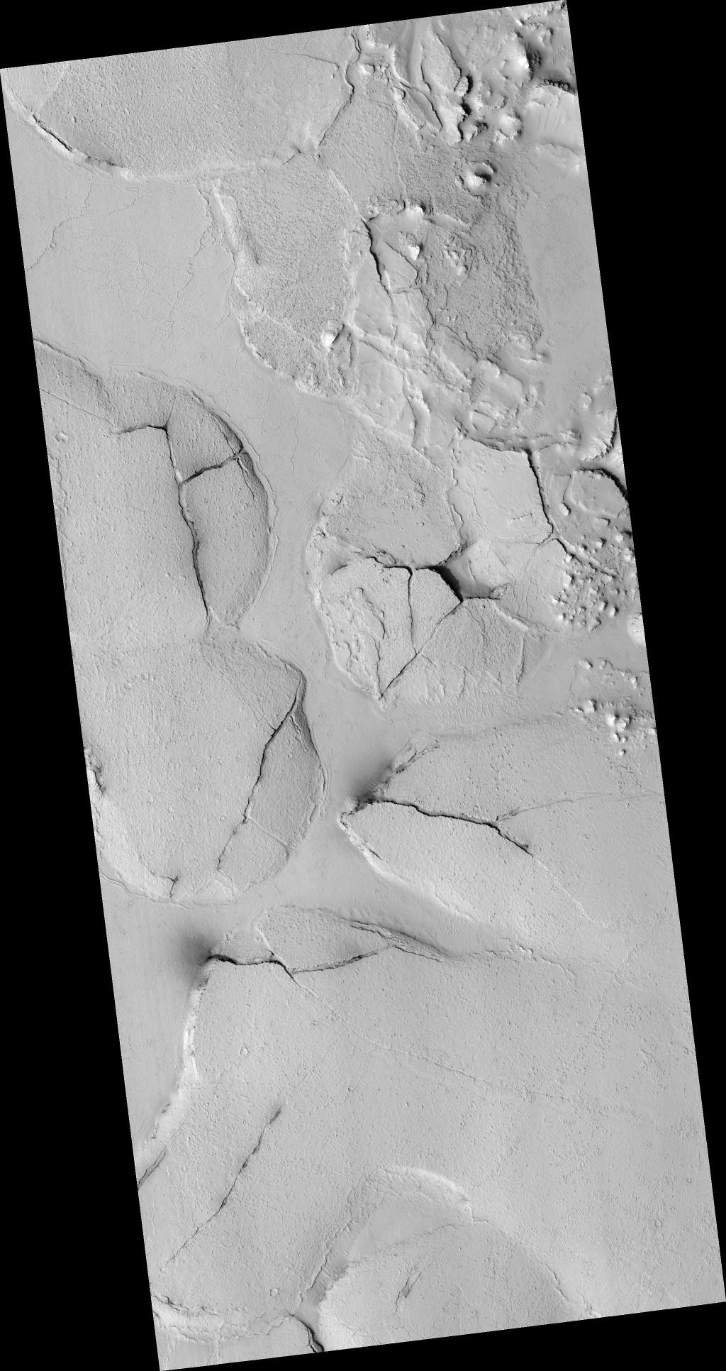 This HiRISE image (PSP_003597_1765), shows fractured mounds on the southern edge of Elysium Planitia.