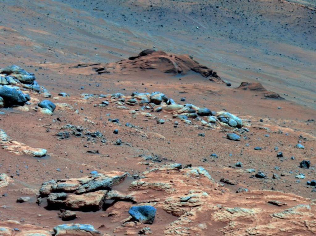 "Lengthy detective work with data NASA's Mars Exploration Rover Spirit collected in late 2005 has confirmed that an outcrop called ""Comanche"" contains a mineral indicating that a past environment was wet and non-acidic, possibly favorable to life."