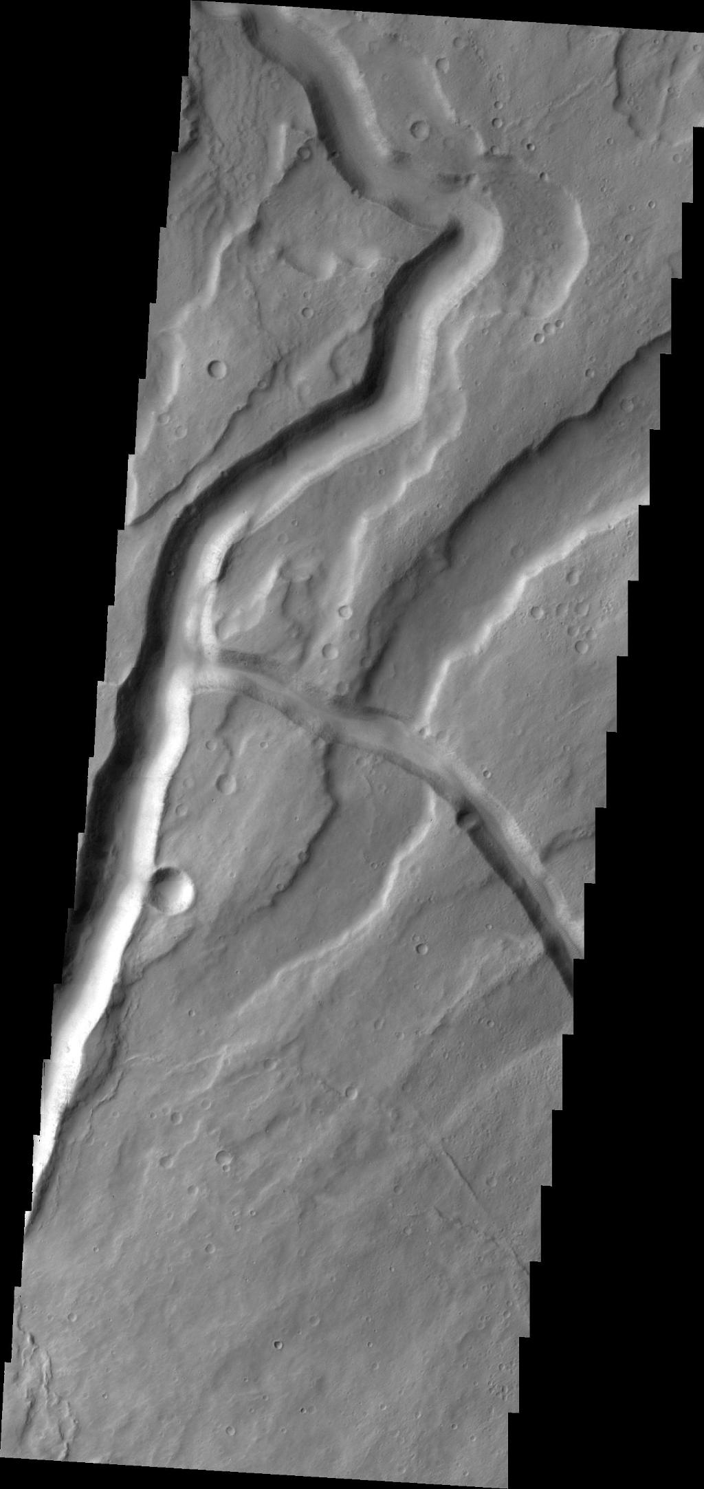 The channels in this VIS image are part of Tyrrhena Fossae on the northern flank of Tyrrhenus Mons.