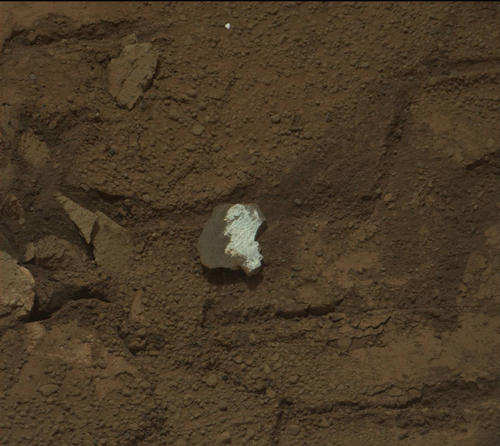 "This raw image of ""Tintina,"" a broken rock fragment in a rover wheel track, was taken by Curiosity's Mast Camera (Mastcam)."