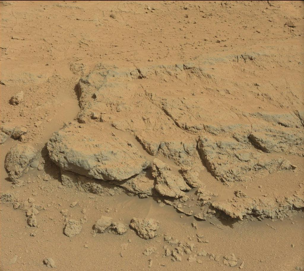 "For at least a couple of days, the science team of NASA's Mars rover Curiosity is focused on a full-bore science campaign at a tantalizing, rocky site informally called ""Darwin."""