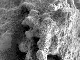 "This close-up image taken by Spirit highlights the nodular nuggets that cover the rock dubbed ""Pot of Gold."""