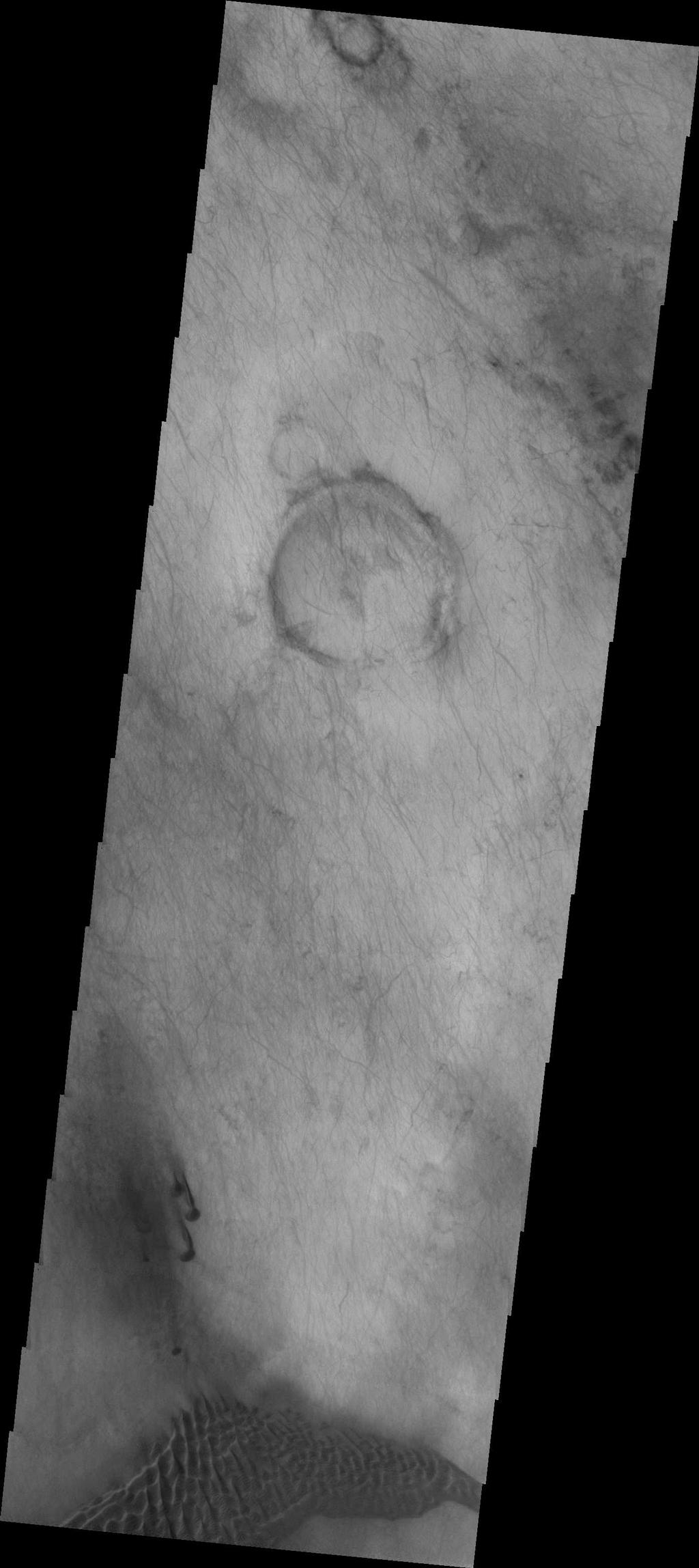 The dunes and dust devil tracks in this VIS image are located on the plains of Planum Chronium.