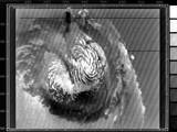 read the article 'Strange Martian Spirals Explained'