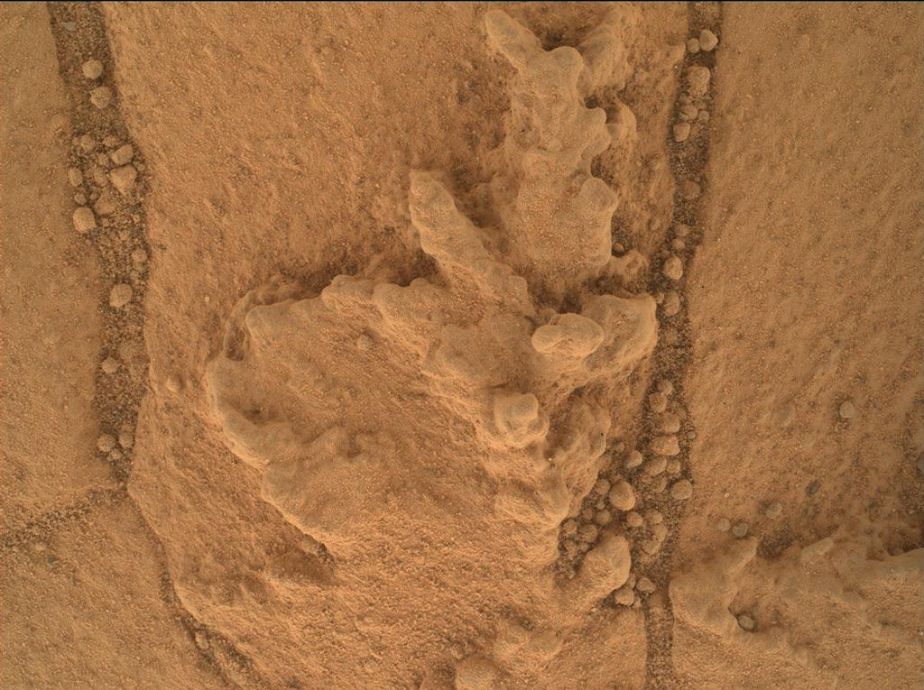 This image from the Mars Hand Lens Imager (MAHLI) camera on NASA's Curiosity Mars rover shows an example of a type of geometrically distinctive feature that researchers are examining at a mudstone outcrop at the base of Mount Sharp.