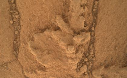 see the image 'Resistant Features in 'Pahrump Hills' Outcrop'