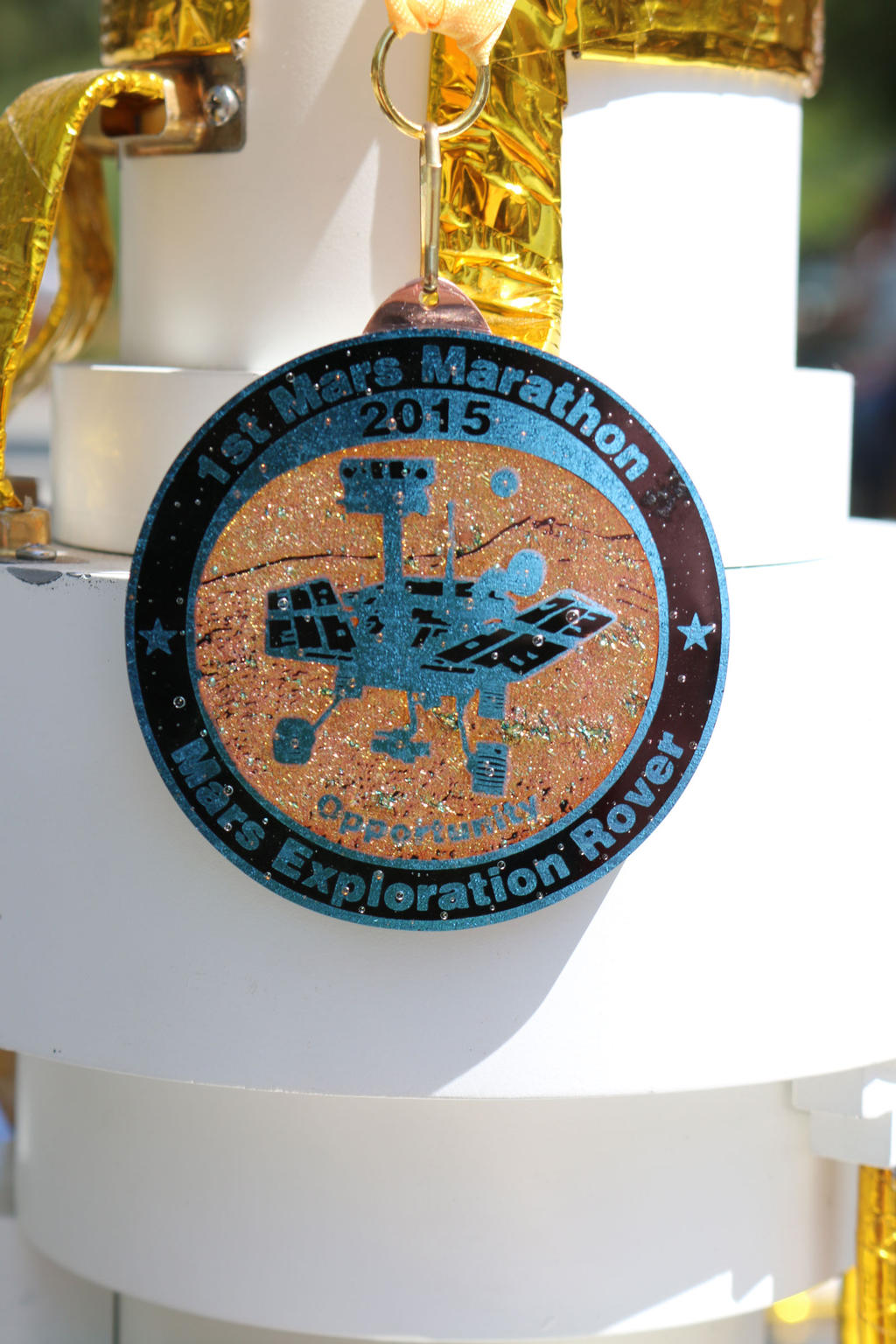 Rover Medal
