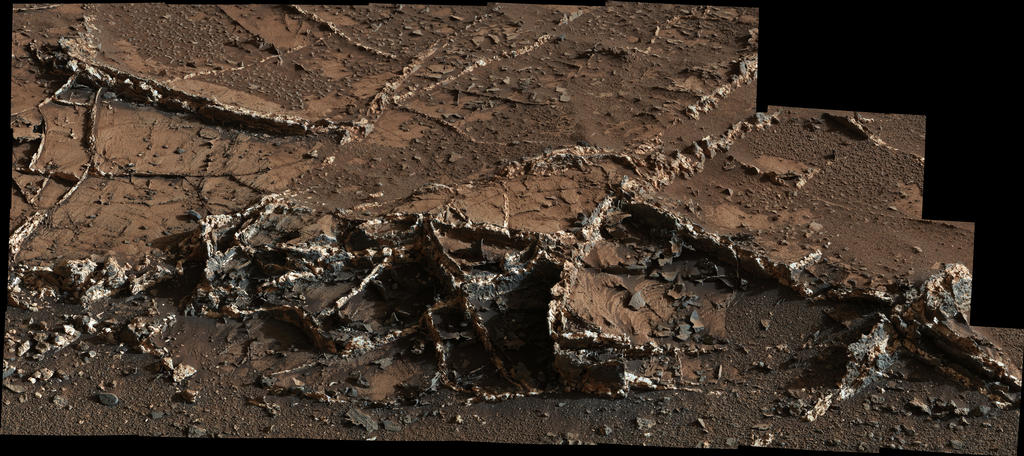 Prominent Veins at 'Garden City' on Mount Sharp, Mars