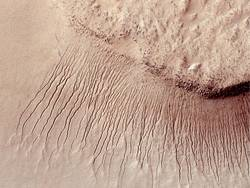 True Gullies on Mars