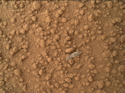 Small Debris on the Ground Beside Curiosity