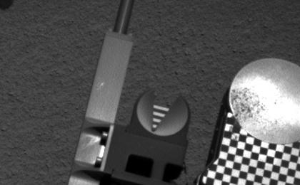 see the image 'Scooped Material on Rover's Observation Tray'