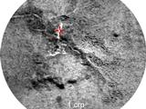"This image shows a close-up of the rock named ""Crest,"" taken by the remote micro-imager (RMI) on Curiosity's Chemistry and Camera (ChemCam) instrument above the analysis of the elements detected by using ChemCam's laser to zap the target."