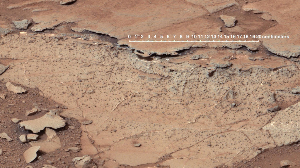 This image from the right Mast Camera (Mastcam) of NASA's Curiosity Mars rover shows roughly spherical features.