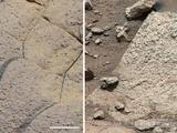 read the article 'NASA Rover Finds Conditions Once Suited For Ancient Life On Mars'