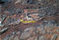 see the image ''Esperance' Target Examined by Opportunity'