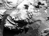 read the article 'NASA's Curiosity Rover Drills Sandstone Slab on Mars'