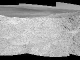 pia18099-Fig1_Ncam-SOL3642-43_left