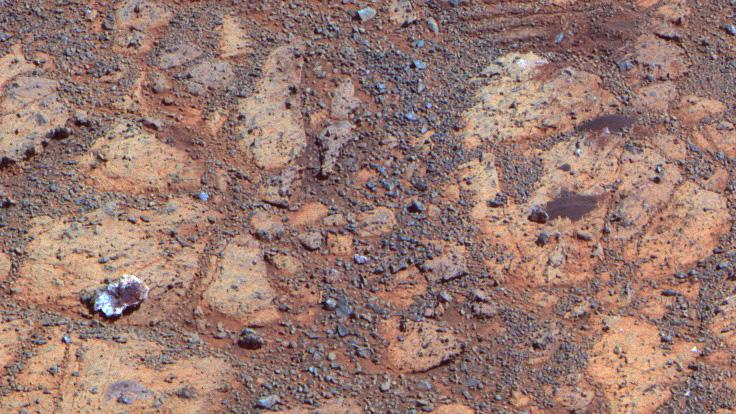 mars rover jelly doughnut - photo #22