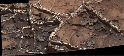 'Garden City' Vein Complex on Lower Mount Sharp, Mars