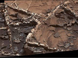 "Prominent mineral veins at the ""Garden City"" site examined by NASA's Curiosity Mars rover vary in thickness and brightness, as seen in this image from Curiosity's Mast Camera (Mastcam). The image covers and area roughly 2 feet across."