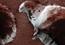 Frosty Falcon