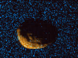 Phobos as observed by MAVEN's Imaging Ultraviolet Spectrograph.
