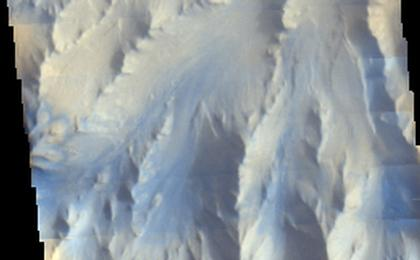 read the article 'Mars Odyssey View of Morning Clouds in Canyon'