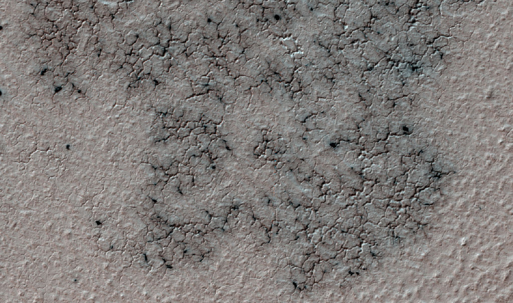 This image shows spidery channels eroded into Martian ground. It is a Sept. 12, 2016, example from HiRISE camera high-resolution observations of more than 20 places that were chosen in 2016 on the basis of about 10,000 volunteers' examination of Context Camera lower-resolution views of larger areas.