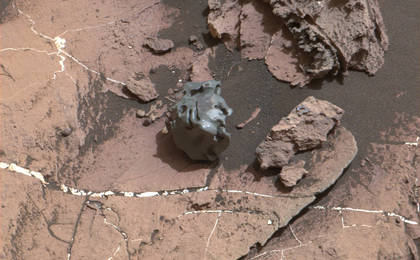 read the article 'Curiosity Mars Rover Checks Odd-looking Iron Meteorite'