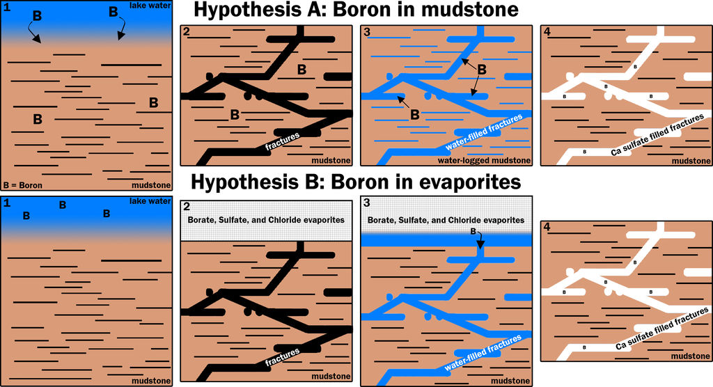 This graphic portrays two hypotheses about how the element boron ended up in calcium sulfate veins found within mudstone layers of Mars' lower Mount Sharp.