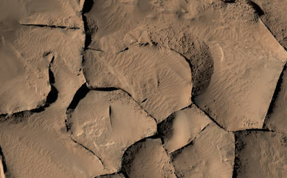 read the article 'Blade-Like Martian Walls Outline Polygons'
