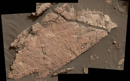 read the article 'Possible Mud Cracks Preserved in Martian Rock'
