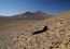 read the news article 'Detecting Life in the Ultra-dry Atacama Desert'