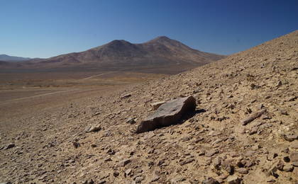 read the article 'Detecting Life in the Ultra-dry Atacama Desert'
