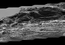 "see the image 'Erosion Effects on ""Vera Rubin Ridge,"" Mars'"