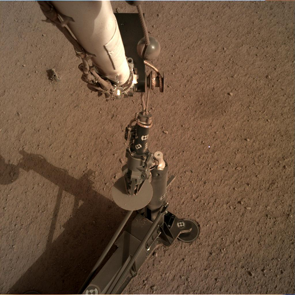 Nasa's Mars lander InSight acquired this image using its Instrument Deployment Camera on Sol 81