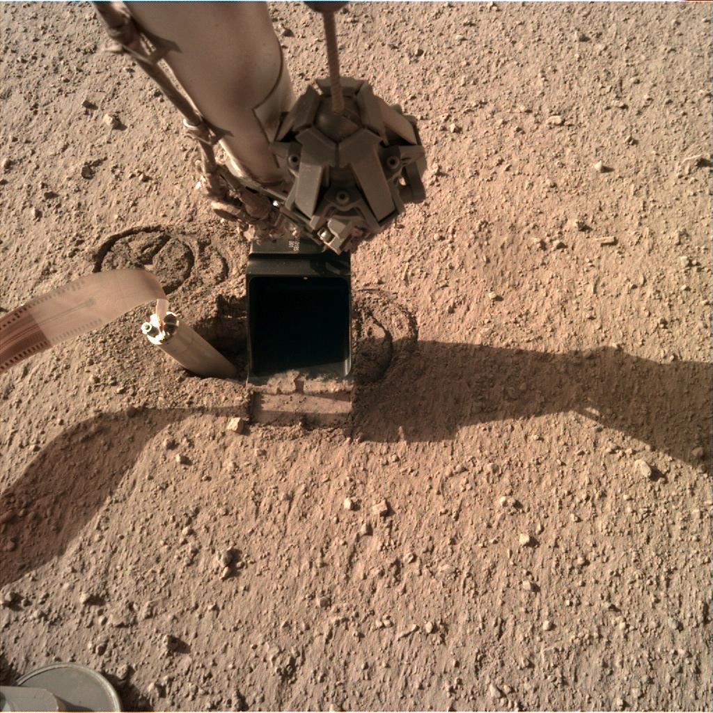 Nasa's Mars lander InSight acquired this image using its Instrument Deployment Camera on Sol 299