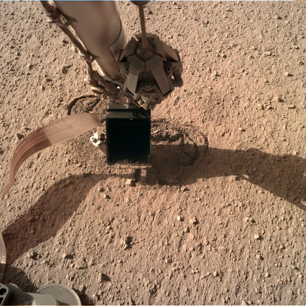 Nasa's Mars lander InSight acquired this image using its Instrument Deployment Camera on Sol 303